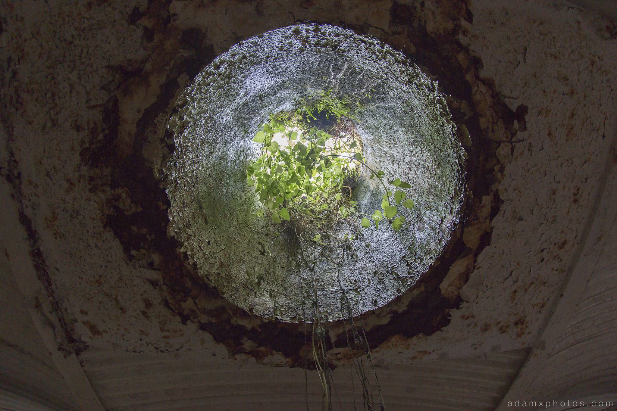 Underwater Ballroom Witley Adam X Whitaker Wright Urbex Urban Exploration skylight light hole green overgrowth photo photos report decay detail glass windows UE abandoned derelict unused empty disused decay decayed decaying grimy grime